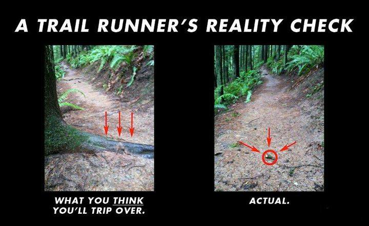 A trail runner's reality check