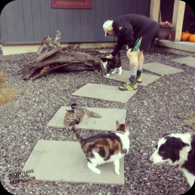 Geoff & cats 1