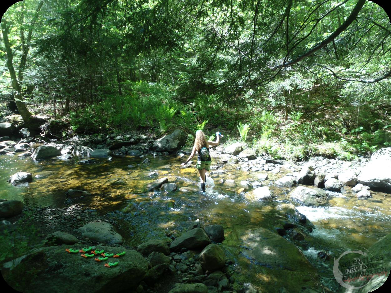 stream crossing infinitus