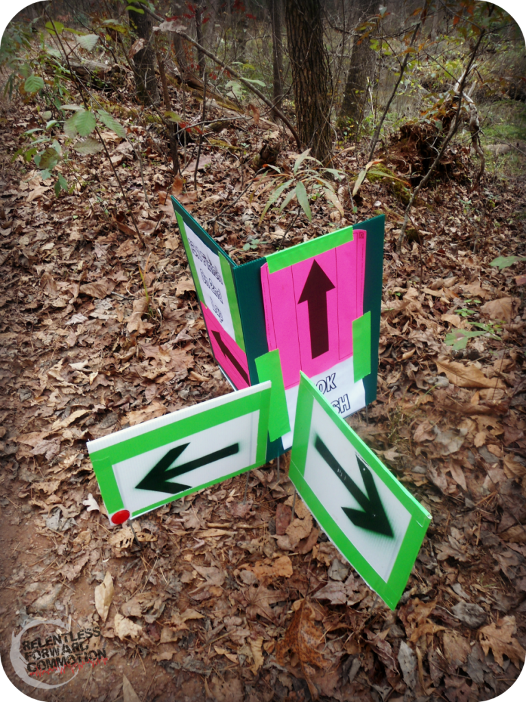 Course Markings Paris Mountain 50K