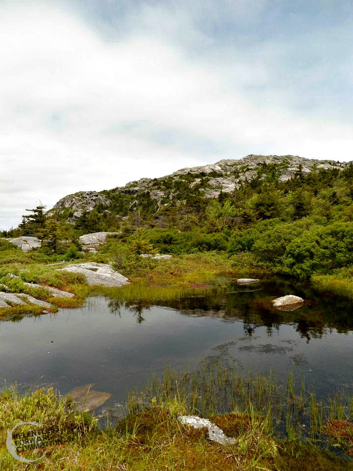 Monadnock two thirds