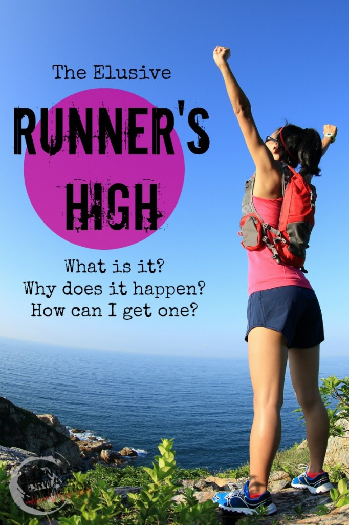The Elusive Runner's High