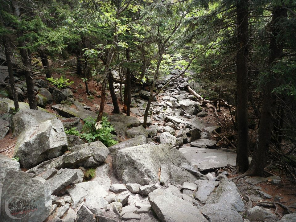 A forest trail covered in big boulders and rocks in a ravine on Mt. Monadnock in New Hampshire