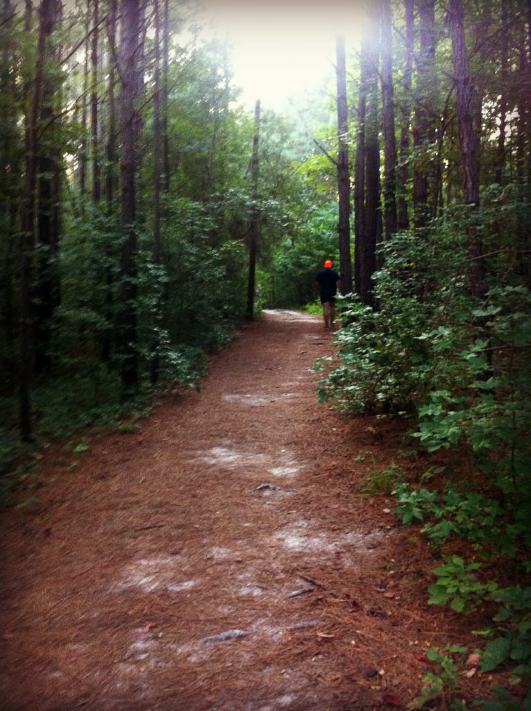 Copperhead20K trails