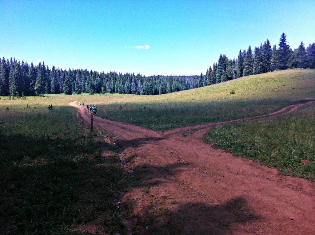Downhill stage 6