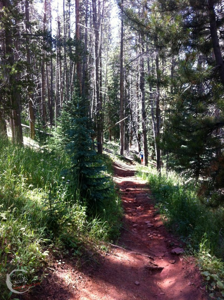 Single track stage 6 transrockies run