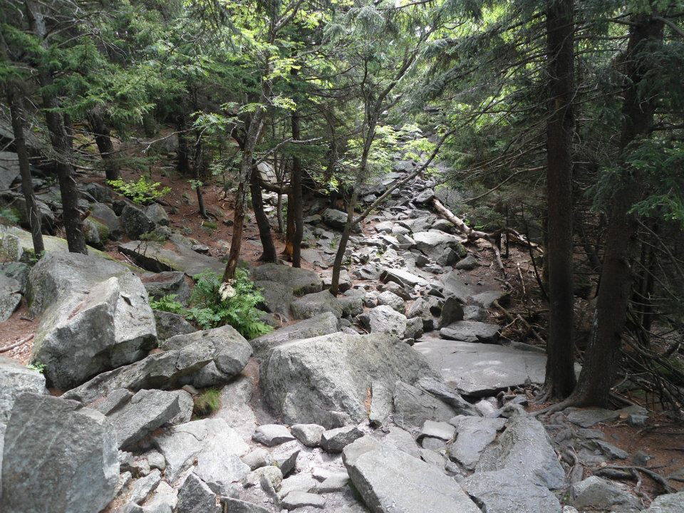 Technical trail on Mt. Monadnock