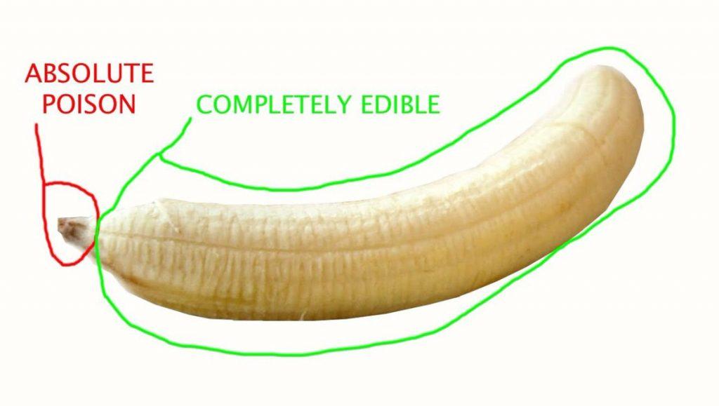 Bananus