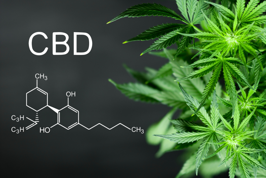 CBD oil chemical compound