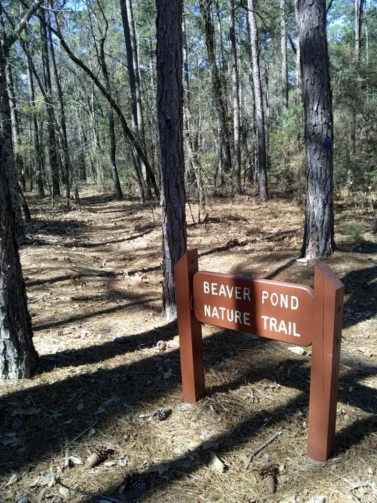 Beaver Pond Nature Trail
