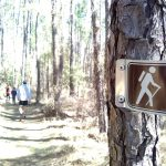 Quest for the SC Ultimate Outsider: Little Pee Dee State Park