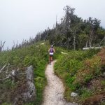 5 Reasons to Go to Upstate Ultra's Trail Running Camp for Big Kids