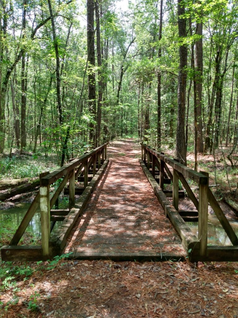 Hell Hole Hundred Race Report Jericho Horse Trail